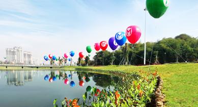 印尼生态湖水生植物构建工程项目